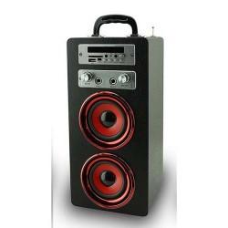 Pure Acoustics MCP-20BL Portable karaoke systeem met bluetooth  USB  SD en FM radio