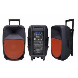 Pure Acoustics PMW1212 Portable bluetooth entertainment systeem met opname functie