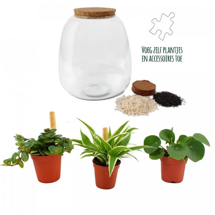DeBlock Plant Puzzle Discover the World Ecosysteem - 25 cm