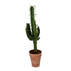 DeBlock Euphorbia erytrea cactus in toscaanse sierpot met bark 90 cm